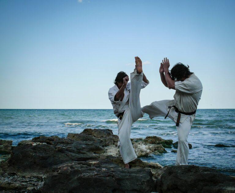 federatia roaman de karate kyokushin 4